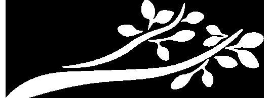 cachf-branch_branch-white